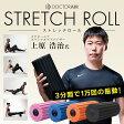 ドクターエア ストレッチロール 強力振動!筋膜リリース、エクササイズに筋トレなど幅広くサポート 筋膜 肩 甲骨 はがし ポール ゴルフ ヨガ 筋肉 グッドデザイン賞