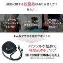 【8月1日〜2日限定で店内全品ポイント エントリーで14倍】ドクターエア 3Dコンディショニングボール CB-01 3