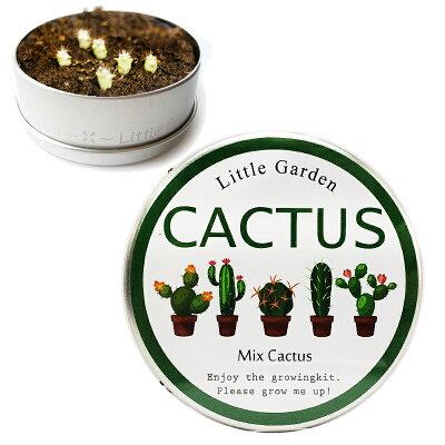 おうち時間 野菜 植物 育てる 栽培キット インテリア 趣味 自由研究 サボテン