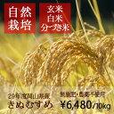 【無肥料 自然栽培米】【農薬不使用】【玄米】【29年産】 岡山県産 きぬむすめ 10kg(5kg×2袋) 真庭市 旧北房町産