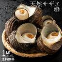 サザエ さざえ (殻入り) 1kg (4〜5個) 天然サザエ 香川県産 冷蔵 [送料無料 海鮮 貝 バーベキュー BBQ 壺焼き 貝類 ] グルメ 1