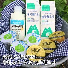 牧成舎牛乳ヨーグルトチーズよりどりセットギフト内祝お礼お返し送料無料岐阜飛騨