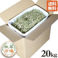 牧草市場USチモシー2番刈り(プレミアム)牧草ダブルプレス20kg