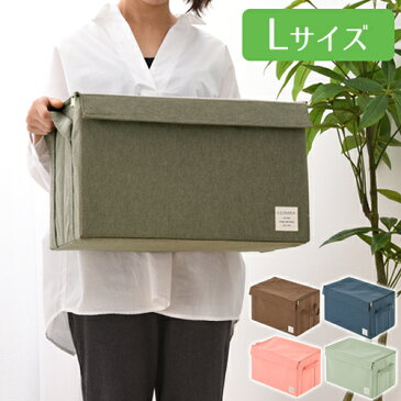 衣類収納ボックス Lサイズ 約 幅43cm 奥行27cm 高さ27cm 衣装ケース 布製 フタ付き