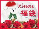 クリスマス限定プリザーブ福袋【宝1クリスマス★セール】