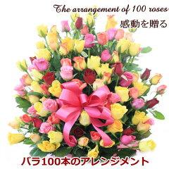 ■■バラMIX100本のアレンジメント【送料無料フラワー】誕生日、お祝い、長寿の願いを込めて還暦などのお祝いにも人気!