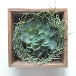 サキュレント・ウッドボックス【壁掛け】【造花】【人工観葉植物】【光触媒】