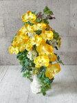 黄色い胡蝶蘭とコムラサキ