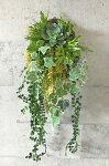 多肉植物の寄せ植え壁掛け