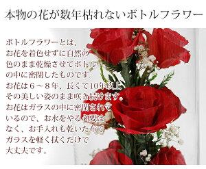 【還暦祝い】【送料無料】ハッピーマザーフラワー(大)【赤色】【名入れ無し】[還暦プレゼント還暦祝い母プリザーブドフラワーガラスバラ薔薇ローズお祝い誕生日ギフトお花贈り物メッセージカード]【_包装】