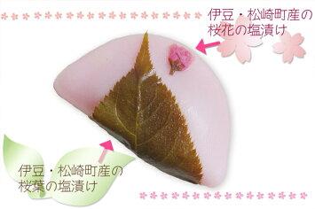 河津桜まつりで大人気!さくら満開餅5個入クール便
