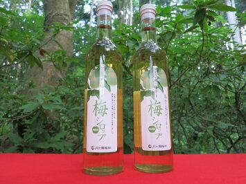 伊豆月ヶ瀬の梅づくり梅シロップ2本入りギフト