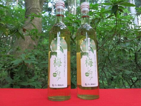 伊豆月ヶ瀬の梅づくり梅シロップ3本入りギフト