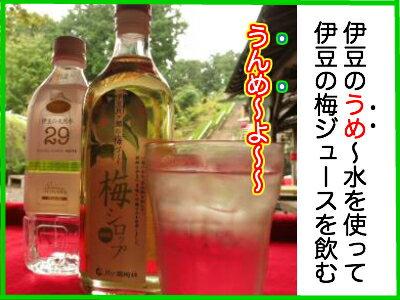 伊豆月ヶ瀬の梅づくり梅シロップ500ml瓶入り無添加うめシロップ静岡の土産に!