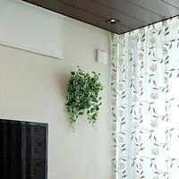 観葉植物壁掛けウォールグリーン光の楽園壁面緑化斑入りアイビー50×20【着後レビューで送料無料】光触媒人工植物造花フェイクグリーンインテリアプレゼントウォールデコウォールアート緑部屋開店アートパネル家具