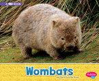 Wombats: A 4D Book WOMBATS (Australian Animals) [ Sara Louise Kras ]