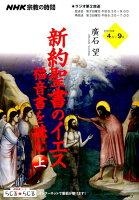 NHK宗教の時間 新約聖書のイエス 福音書を読む(上)