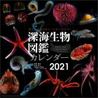 深海生物図鑑(2021年1月始まりカレンダー)
