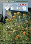 カラーグラフィック薬用植物第4版 常用生薬写真 植物性医薬品一覧 [ 北中進 ]
