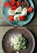 有元葉子 この2皿さえあれば。 私が食べたい季節の味