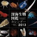【送料無料】【ハゴロモ_ポイント5倍】深海生物図鑑 2013 カレンダー