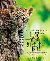 世界で一番美しい野生ネコ図鑑