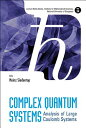 Complex Quantum Systems: Analysis of Large Coulomb Systems COMPLEX QUANTUM SYSTEMS (Lecture Notes Series, Institute for Mathematical Sciences, National University of Singapore) [ Heinz Siedentop ]