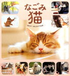 なごみ猫BEST SELECTION