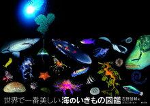 世界で一番美しい海のいきもの図鑑