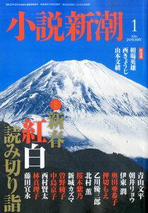 小説新潮 2016年 01月号 [雑誌]
