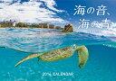 【送料無料】【カレンダー_ポイント5倍】【20131010_5倍+】海の音,海の青:高砂淳二