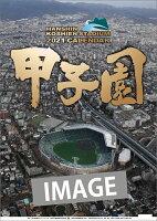 甲子園球場(2021年1月始まりカレンダー)