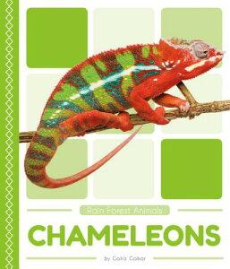 Chameleons CHAMELEONS (Rain Forest Animals) [ Golriz Golkar ]
