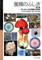 菌類のふしぎ第2版