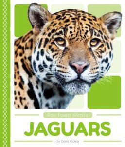 Jaguars JAGUARS (Rain Forest Animals) [ Golriz Golkar ]