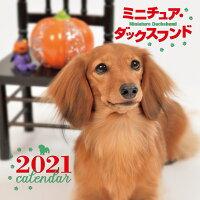 2021年 大判カレンダー ミニチュア・ダックスフンド