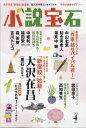 【送料無料】小説宝石 2011年 04月号 [雑誌]