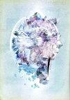 RADWIMPS LIVE&DOCUMENT 2014「×と○と君と」【Blu-ray】 [ RADWIMPS ]