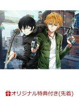 【楽天ブックス限定先着特典】TVアニメ「プレイタの傷」DVD Vol.4(ブロマイド)