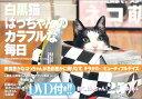 【入荷予約】 白黒猫はっちゃんのカラフルな毎日
