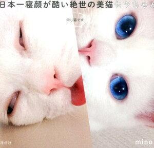 【楽天ブックスならいつでも送料無料】日本一寝顔が酷い絶世の美猫セツちゃん [ mino ]