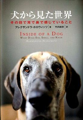【送料無料】犬から見た世界