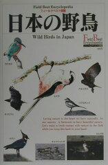 【送料無料】日本の野鳥