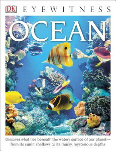 DK Eyewitness Books: Ocean: Discover What Lies Beneath the Watery Surface of Our Planet from Its Sun DK EYEWITNESS BKS OCEAN (DK Eyewitness) [ Miranda MacQuitty ]