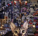 CATALOGUE 1987-2016 (初回限定盤A 4CD+Blu-ray) [ BUCK-TICK ]