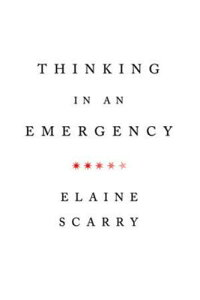 Thinking in an Emergency THINKING IN AN EMERGENCY (Amnesty International Global Ethics) [ Elaine Scarry ]