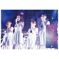 乃木坂46 4th YEAR BIRTHDAY LIVE 2016.8.28-30 JINGU STADIUM Day2【Blu-ray】