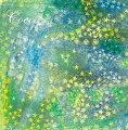 ザ・ベスト盤(通常盤 2CD)
