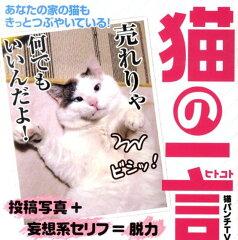 【楽天ブックスならいつでも送料無料】猫の一言 [ 猫パンチTV ]