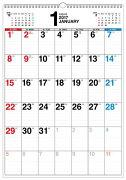 書き込み式シンプルカレンダー「B3タテ」(2017)